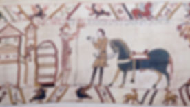 William's tapestry