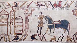 William's tapestry