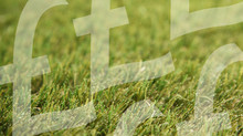 What does artificial grass cost?