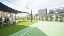 outdoor living artificial grass.jpg