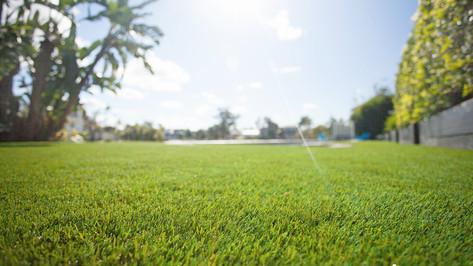 natural artificial grass.jpg