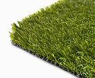 lush grass.jpg