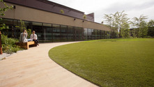 communal area grass.jpg