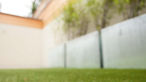 synthetic grass close up.jpg
