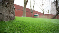 synthetic grass school.jpg