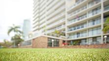 high rise artificial grass.jpg