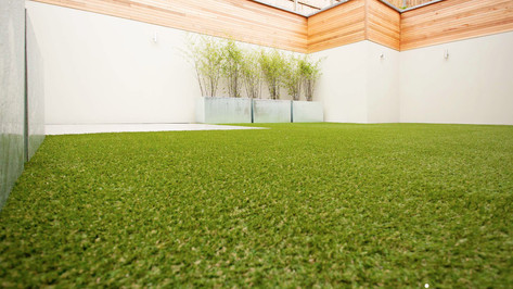 synthetic grass burleigh.jpg