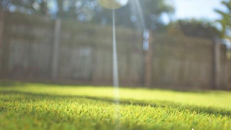 sun artificial grassjpg.jpg