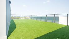 Hope island artificial grass.jpg