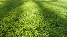 synthetic grass close upjpg.jpg