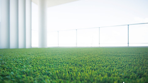 vacuum artificial grass.jpg
