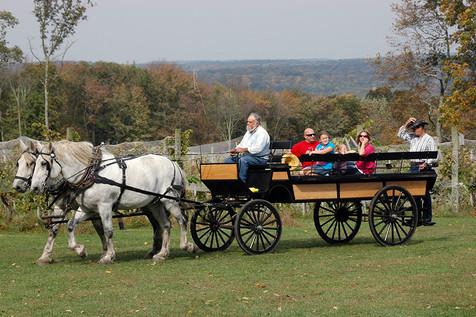 family-fun-ct-carraige-ride.jpg