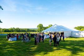 Wedding Site - Reception.jpeg