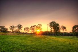 vineyard-sunset-priam-ct.jpg