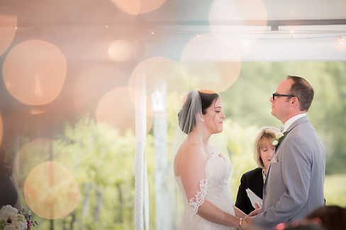sam_erik_wedding-0333.jpg