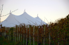 events-tent-priam-vineyards.jpg