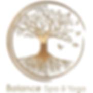BSAYG-Logo-Sq---background.png