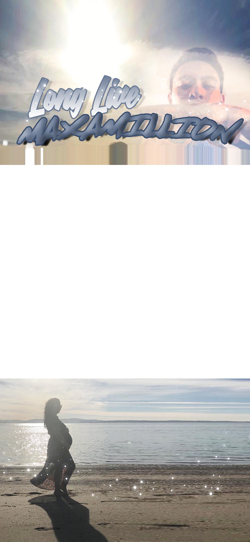 roy-filter