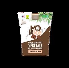 glace vegan chocolat