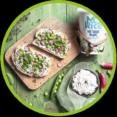 Recette tartine legume de saison vegan