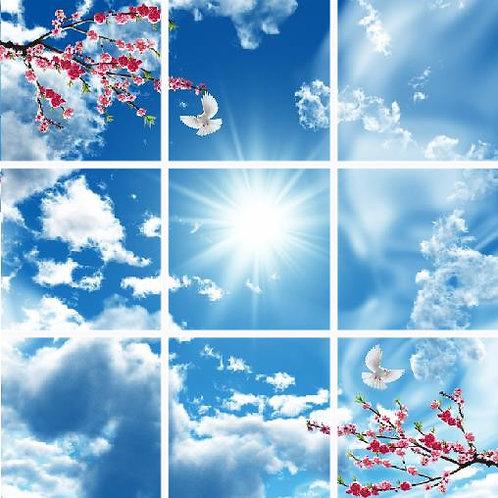Kit 9 panneaux leds - 60 x 60 cm Décor plein ciel