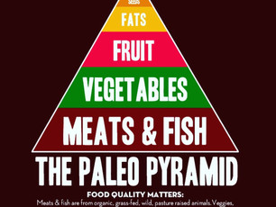 Paleo Tried and Tested