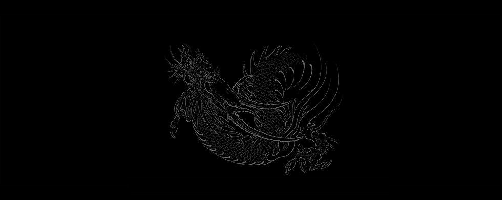 Dragon_header_2.jpg