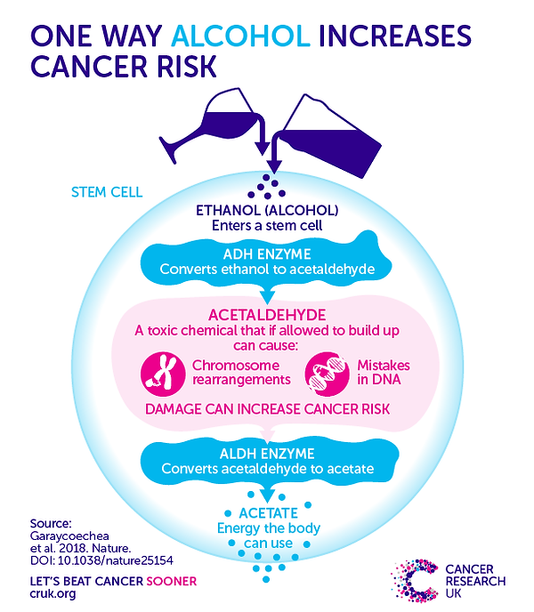 180103-How-alcohol-increases-cancer-risk