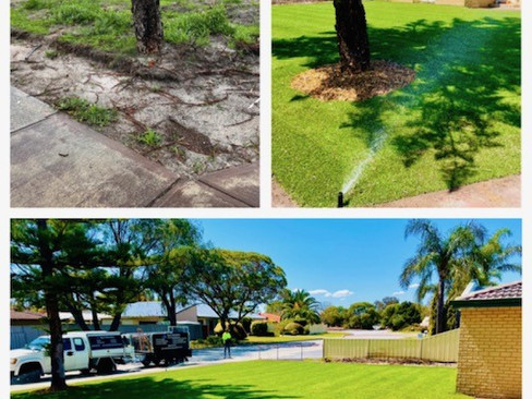 Lawn and Reticulation Installation in Sorrento