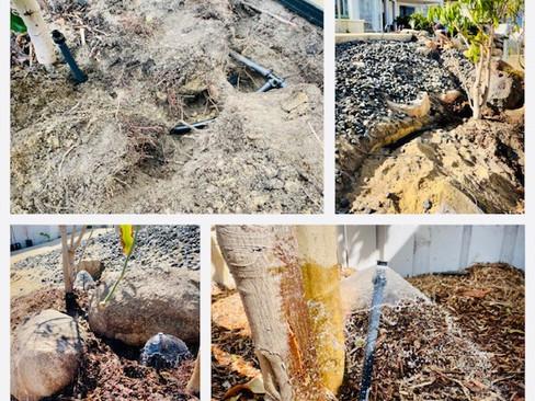 Reticulation Repairs in Morley