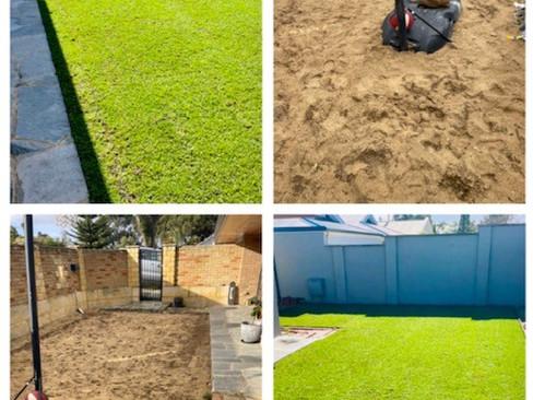 Buffalo Lawn Installation