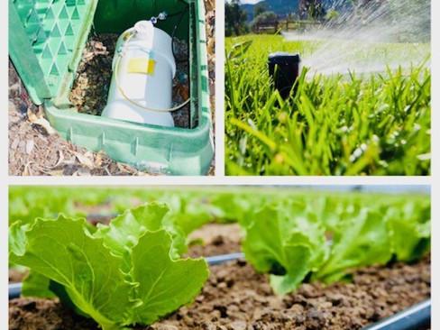 Residential Fertigation Systems in Perth