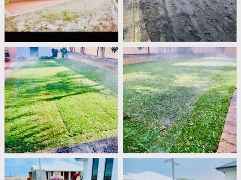 Lawn Installation in Wanneroo