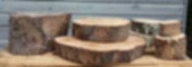 Chunky log slices.jpg