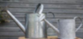 Zinc watering cans.jpg