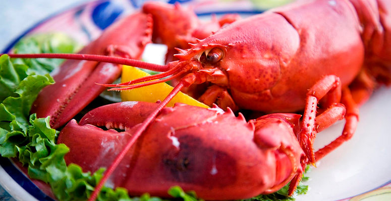 Poached-Maine-Lobster.jpeg