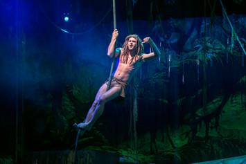 Tarzan Vine.jpg