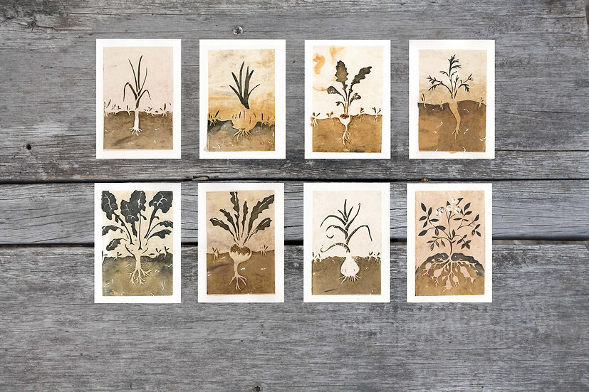 Roots - all 8 cards