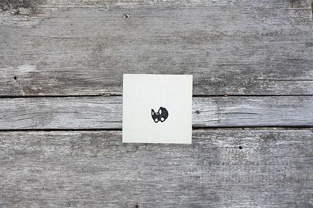 doopsuikerkaartjestempel owl.jpg