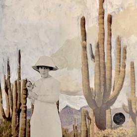Ada .Graceful Saguaros