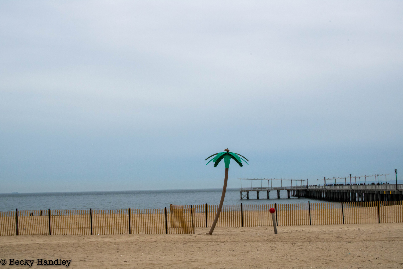 TRAVEL_Coney Island 1_.jpg