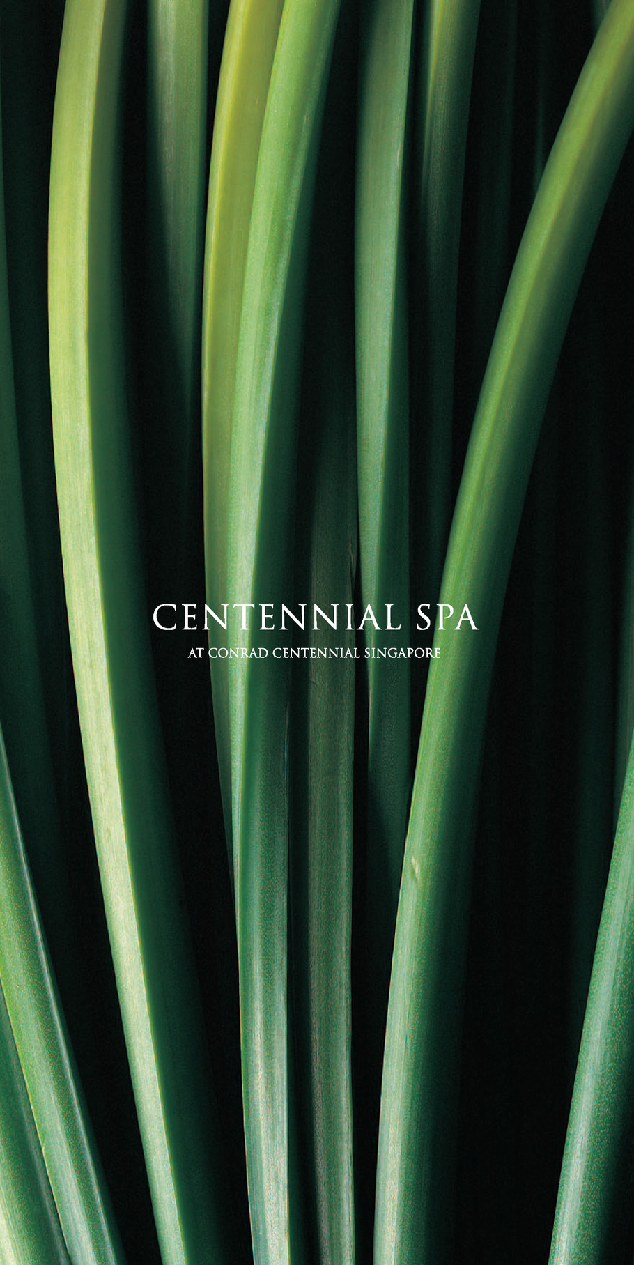 Conrad Spa Brochure