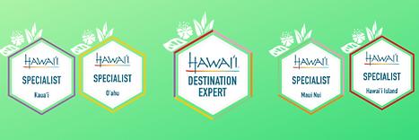 hawaii (1).png