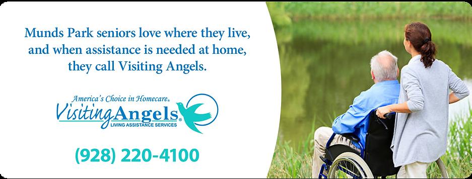 DASH Visiting Angels.png