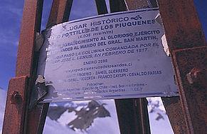 PajaritoPiuquenesPlanchon2006 081.jpg