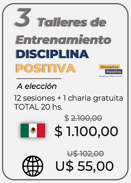 3 TALLERES MX US.png