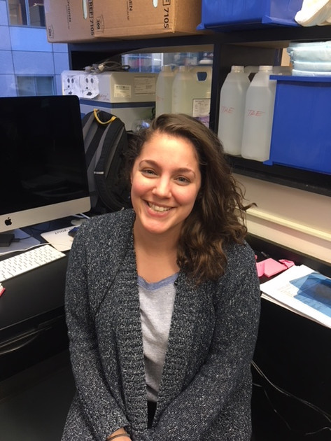 Laura Stevens, PhD