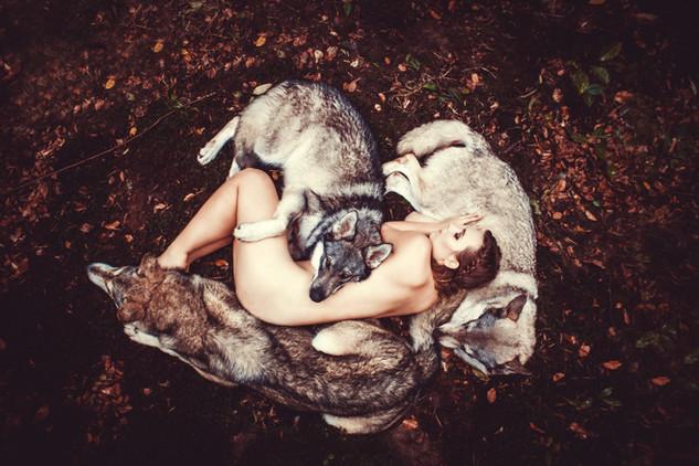 Wenn Du durch den Wald irrst, deinen Weg verloren und ohne Hoffnung scheint, dann schließe die Augen und schöpfe neuen Mut. Nur ein Kämpfer schläft Nachts bei den Wölfen