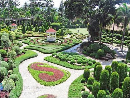 Design Ideas for Beautiful Gardens