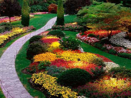 Is Your Yard Ready for the Growing Season?